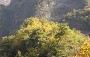 【平凉图片】金秋崆峒