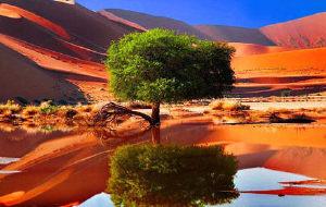 纳米比亚图片