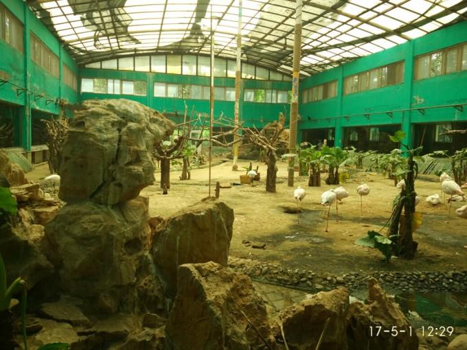 大兴野生动物园