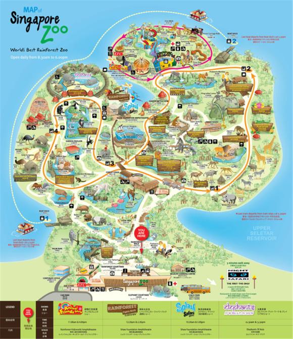 新加坡夜间动物园门票(含游园小火车)/不限时段