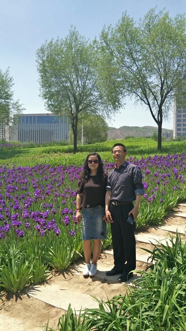 青海民族大学的牡丹花