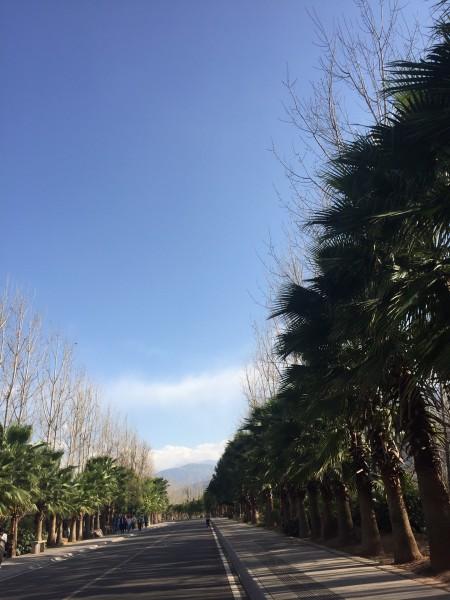 西昌市三日游(邛海,螺髻,庐山)