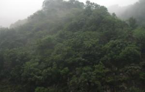 【济源图片】济源小沟背雨中游