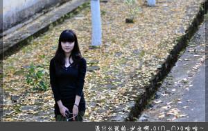 【广东图片】爱之途——11月南雄·银杏(幕后大功臣曝光)