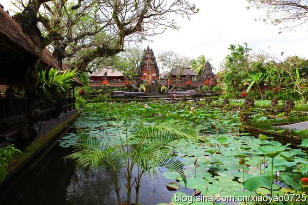 巴厘岛 游记  在乌布的街上走走,随随便便都可以看到这样的小院,虽说