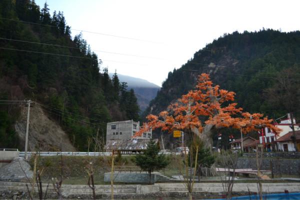 米亚罗镇风景区--我的行万里路