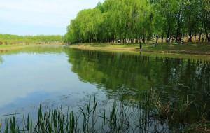【顺义图片】汉石桥湿地印象