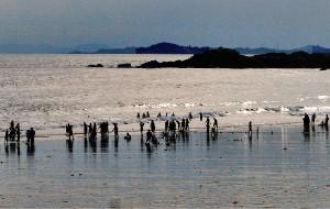 【惠安图片】周末崇武看海