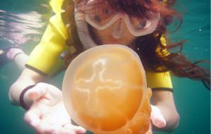 【帕劳图片】潜水者的朝圣地-帕劳