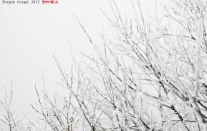 【西岭雪山图片】2012.11.25-26西岭雪山 后山两天游