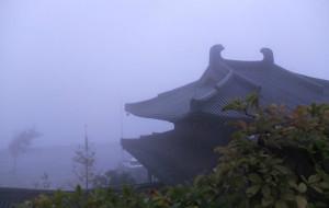 【慈溪图片】另一番宁静 雨中慈溪行