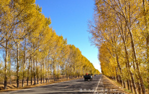 【伊春图片】黑龙江——你的故乡,曾是我的异乡(大庆、伊春、哈尔滨)