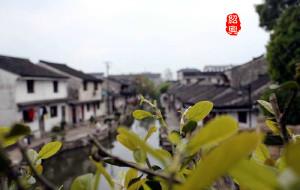 【新昌图片】故乡情.新昌周边行(不断更新中……)