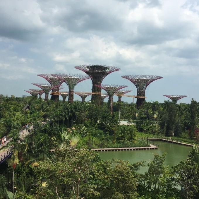 而建,以钢铁和玻璃为主要结构,最大程度上优化了观景视野,加强了陆地和海洋之间的联系,即使是人造景观,漫步其中,再次感受设计、创新、科技之美,这里处处谱写着人与自然和谐共生的朴素而诗意的乐章。百花穹顶是缩微版的植物园,各种俏丽的热带花朵,珍奇的绿植,流动的绚丽,令人目不暇接;云雾森林的设计巧夺天工,首先映入眼帘的是大瀑布,顿觉凉爽,乘坐电梯直接到顶层失落的世界(Lost World)景点,吸睛的同样是姿态万千的各类绿植,行走在云中漫步和树冠走廊迂回的长廊上,此刻,外面滂沱大雨,按着入注的雨水顺着顶