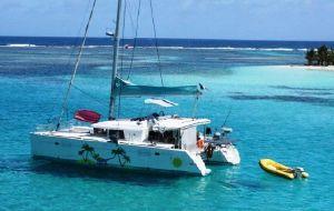 【汤加图片】游览汤加的唯一全包宴,加入我们的毫华双体帆船,一起去与大翅鲸游水吧