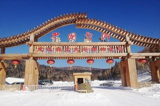 中国雪乡动物拉车