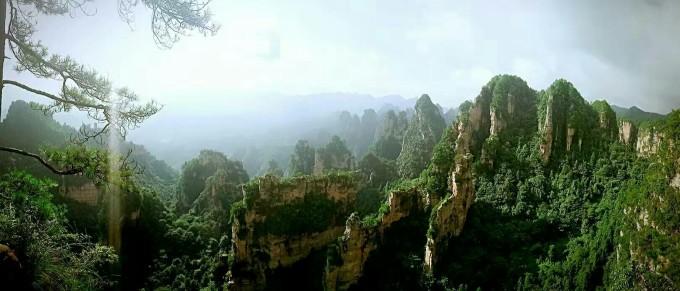 安徽屏山风景色彩树