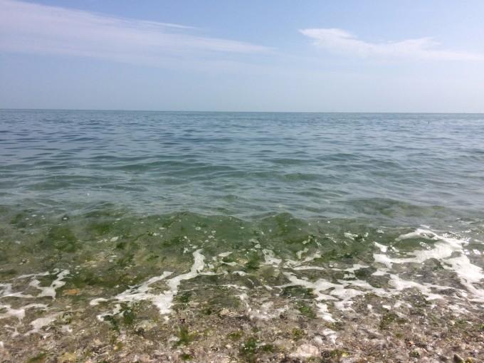 一路沿海岸走过去,海滩上都是鹅卵石般大小的沙砾,走过去好不