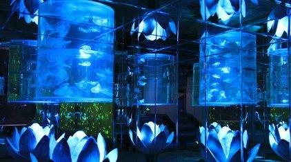 大明湖海底世界是一座集海洋旅游,海底观光,科普为一体的现代化海洋