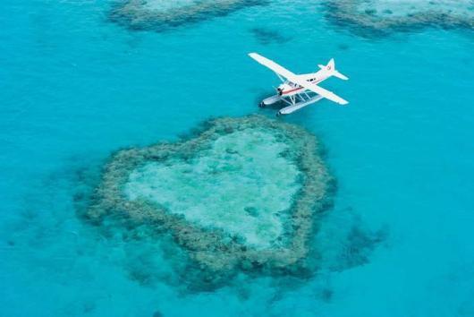 【蓝色大海的传说,掠过心形礁】汉密尔顿岛出发:哈迪大堡礁一日游