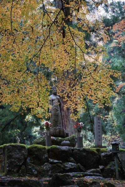 亚洲 日本 福井县 吉田郡 永平寺 - 西部落叶 - 《西部落叶》· 余文博客