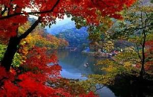 【本溪图片】本溪关门山国家森林公园一日游(2016.7.27)