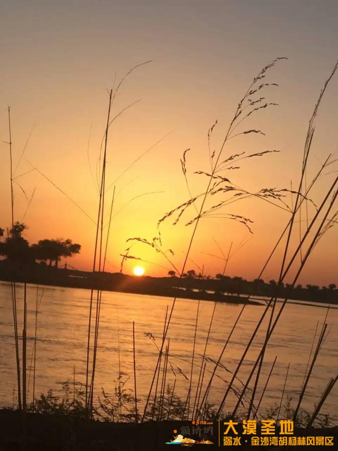 大漠圣地—弱水金沙湾胡杨林风景区,不仅有绝美的胡杨