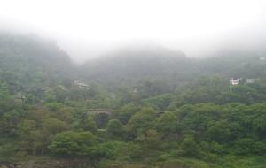 【宜宾图片】山清水秀的川南小城---- 宜宾 ( 二)蜀南竹海