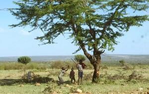 【马赛马拉国家公园图片】两个女人独闯非洲·肯尼亚7天6夜!