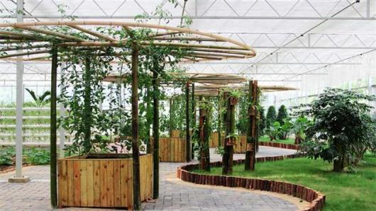 南昌出发新余亚热带天堂一七彩小镇亚洲植物园 一日游