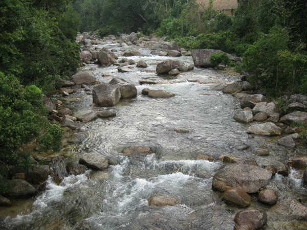 乐东/随处可见的小溪流有着这儿特有鱼类的生存~ 接下来 雨林谷~
