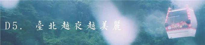 D5. 臺北越夜越美麗