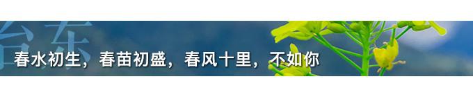 【D10台东】春水初生,春苗初盛,春风十里,不如你!