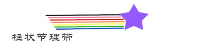 柱状节理带