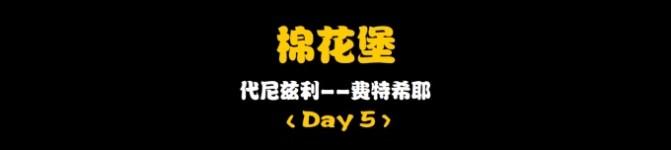 Day5:棉花堡