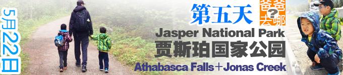 第五天 Athabasca Falls